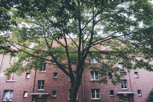 Jak mieszka się na nowych osiedlach w Katowicach?